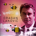Dragan Lakovic - Ivin voz
